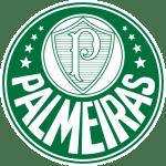 palmeiras campeonato brasileiro